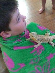 Sonen håller Sedona