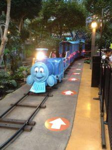 Lillan kommer på tåget, alldeles ensam eftersom det hade hunnit bli sent på kvällen och nöjesparken började vara tömd på folk.